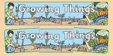 Growing Things Banner Romanian Translation