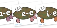 Modifying E Letters on Turtle to Support Teaching on The Great Pet Sale