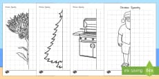 New Zealand Christmas Symmetry Activity Sheets