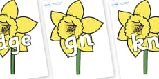 Silent Letters on Daffodils