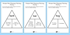 Multiple Word Meanings Matching Activity