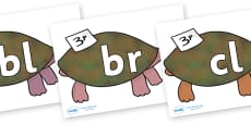Initial Letter Blends on Turtle to Support Teaching on The Great Pet Sale