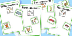 Sea Creatures Farm Animals Wild Animals And Minibeasts Sorting Activity