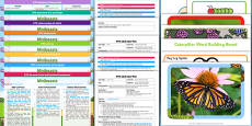 EYFS Minibeasts Bumper Planning Pack