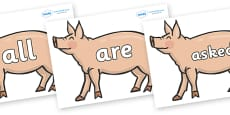Tricky Words on Pig to Support Teaching on Pig in the Pond