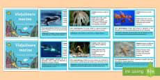 Viețuitoare marine Cartonașe informative