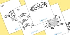 Under the Sea Colouring Posters Arabic Translation