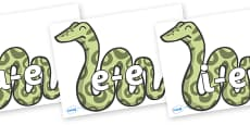 Split Digraphs on Snakes