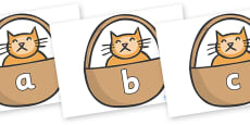 Phase 2 Phonemes on Hamish in Basket to Support Teaching on The Lighthouse Keeper's Lunch