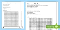 Urban Issues Clue Hunt 1 Activity Sheet