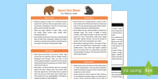 Bears Fact Sheet for Adults