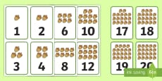 Number of Nuts to 20 Number Cards