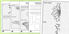 Symmetry in Nature Activity Sheet