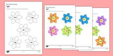 CfE Phoneme Flower Display Pack