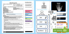 EYFS The Human Skeleton Adult Input Plan and Resource Pack to Support Teaching on Funnybones