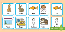 * NEW * Pets and Where They Live Matching Cards
