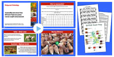 Where Food Comes From and Seasonality Lesson Teaching Pack