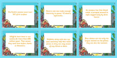 Under the Sea Display Fact Cards