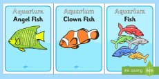 The Aquarium Role Play Display Posters