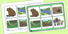 Bear Hunt Matching Cards and Board