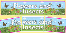 Flowers and Insects IPC Banner