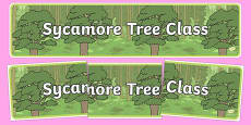 Sycamore Themed Classroom Display Banner