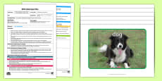 * NEW * EYFS Animal Hunt Adult Input Plan and Resource Pack
