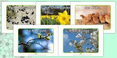 Spring Display Photos German