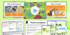 PlanIt - Science Year 6 - Living Things and Their Habitats Lesson 4: Microorganisms Lesson Pack