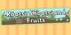 Roots Shoots and Fruits Display Banner