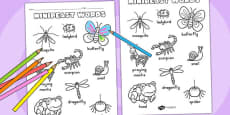 Minibeasts Cute Words Colouring Sheet - Australia