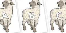 A-Z Alphabet on Lamb
