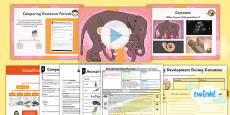 PlanIt - Science Year 5 - Animals Including Humans Lesson 5: Gestation Periods Lesson Pack