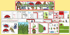Resource Pack to Support Teaching on The Bad Tempered Ladybird