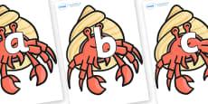 Phoneme Set on Hermit Crabs