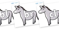 Initial Letter Blends on Donkeys
