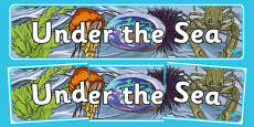 New Zealand Under the Sea Display Banner