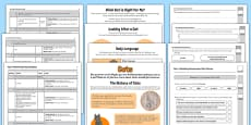 Year 4 Non Fiction Cats Reading Assessment Resource Pack