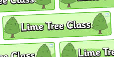 Lime Tree Themed Classroom Display Banner
