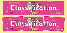 Classification Display Banner