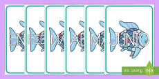 El pez arcoiris los meses del año de exposición