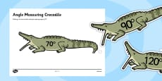 Angle Measuring Crocodiles
