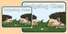 Hedgehog Class Display Poster
