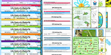 EYFS Life Cycle of a Butterfly Lesson Plan Enhancement Ideas and Resources Pack