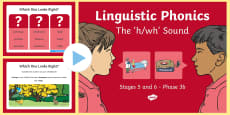 * NEW * NI Linguistic Phonics Stage 5 and 6 Phase 3b, 'h, wh' Sound PowerPoint