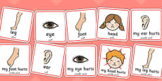 Parts of the Body Communication Cards Arabic Translation