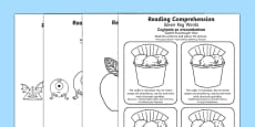 Reading Comprehension Seven Key Words Activity Sheets Polish Translation