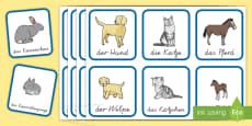 Tiere und ihre Jungen Wort- und Bildkarten