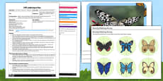 Butterfly Symmetry Matching EYFS Adult Input Plan and Resource Pack