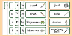 Dinosaur Museum Topic Word Cards